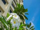 October Weekend Getaway at Concorde Hotel Shah Alam